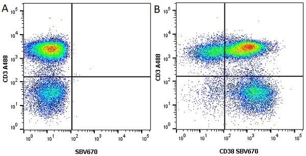 Anti Human CD38 Antibody, clone AT13/5 thumbnail image 4