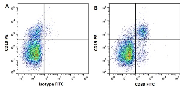 Anti Human CD39 Antibody, clone A1 thumbnail image 1