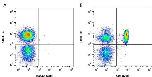 Anti Human CD4 Antibody, clone RPA-T4 thumbnail image 2