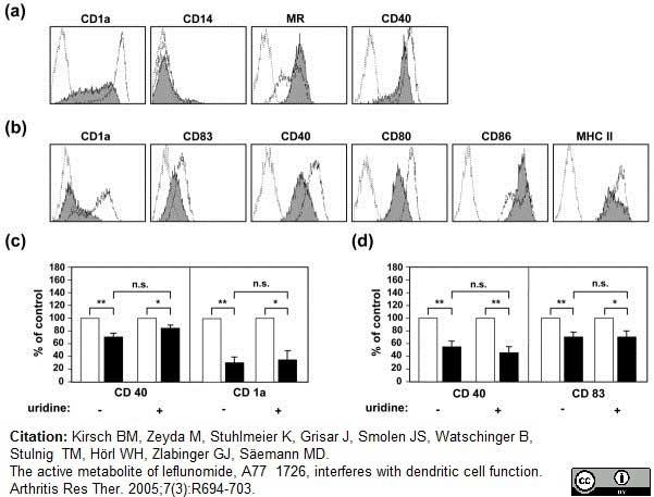 Anti Human CD40 Antibody, clone LOB7/6 thumbnail image 10