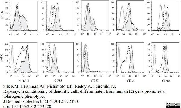 Anti Human CD40 Antibody, clone LOB7/6 thumbnail image 12