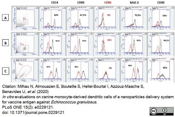 Anti Human CD40 Antibody, clone LOB7/6 thumbnail image 13