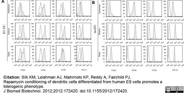 Anti Human CD40 Antibody, clone LOB7/6 thumbnail image 8