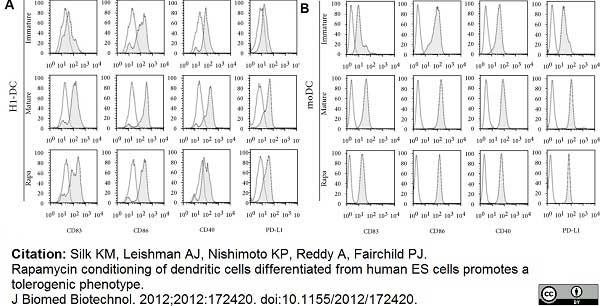 Anti Human CD40 Antibody, clone LOB7/6 thumbnail image 9