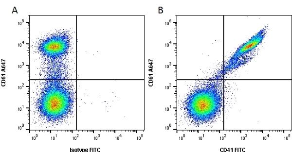 Anti Human CD41 Antibody, clone PM6/248 gallery image 1