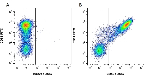 Anti Human CD42b Antibody, clone AK2 gallery image 1