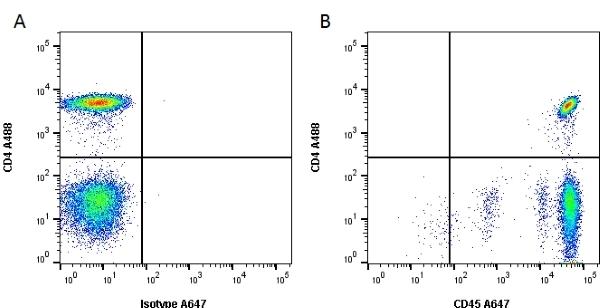 Anti Human CD45 Antibody, clone F10-89-4 thumbnail image 2