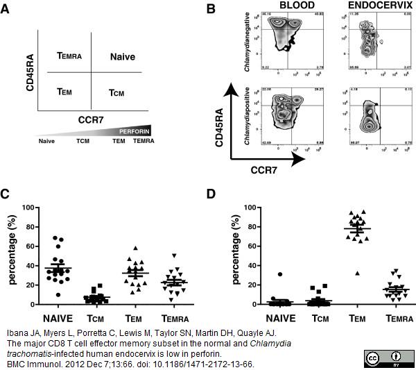 Anti Human CD45RA Antibody, clone F8-11-13 thumbnail image 5