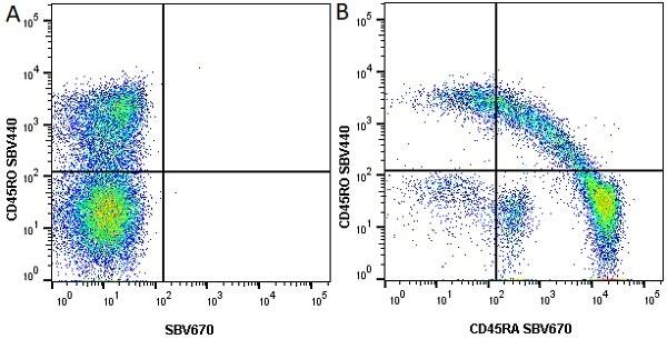 Anti Human CD45RO Antibody, clone UCHL1 thumbnail image 6