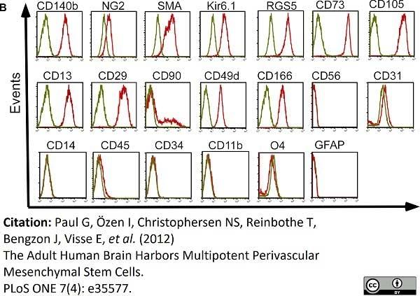 Anti Human CD49d Antibody, clone 44H6 thumbnail image 6