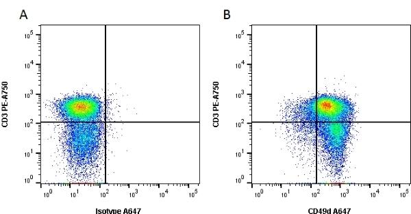 Anti Human CD49d Antibody, clone Bu49 thumbnail image 1