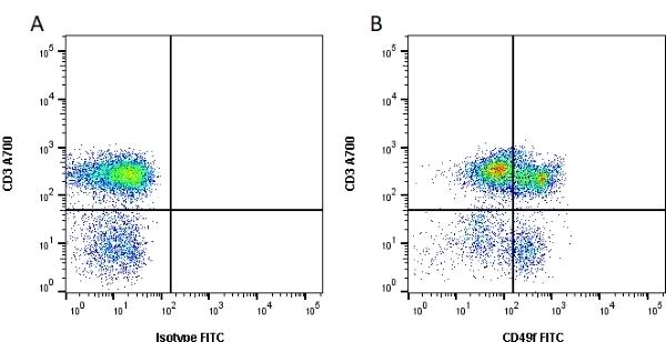 Anti Human CD49f Antibody, clone NKI-GoH3 thumbnail image 1