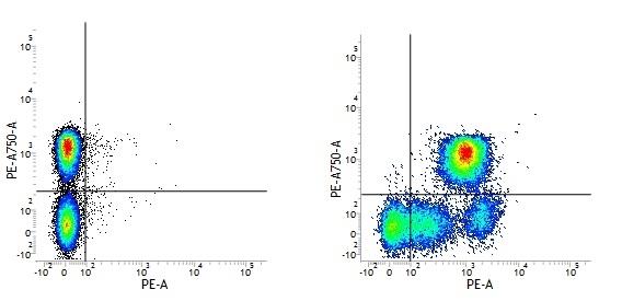 Anti Human CD52 Antibody, clone HI186 gallery image 1