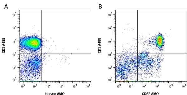Anti Human CD52 Antibody, clone YTH34.5 thumbnail image 1