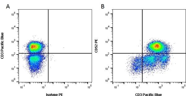 Anti Human CD52 Antibody, clone YTH34.5 thumbnail image 2