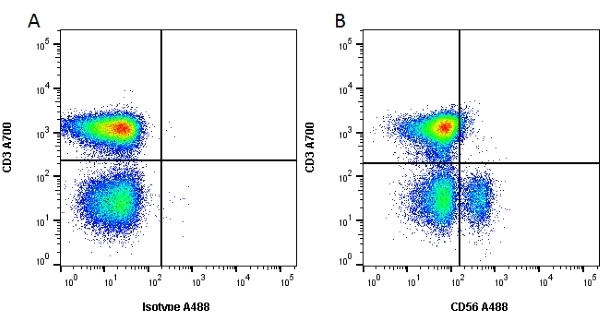 Anti Human CD56 Antibody, clone 123C3 thumbnail image 1