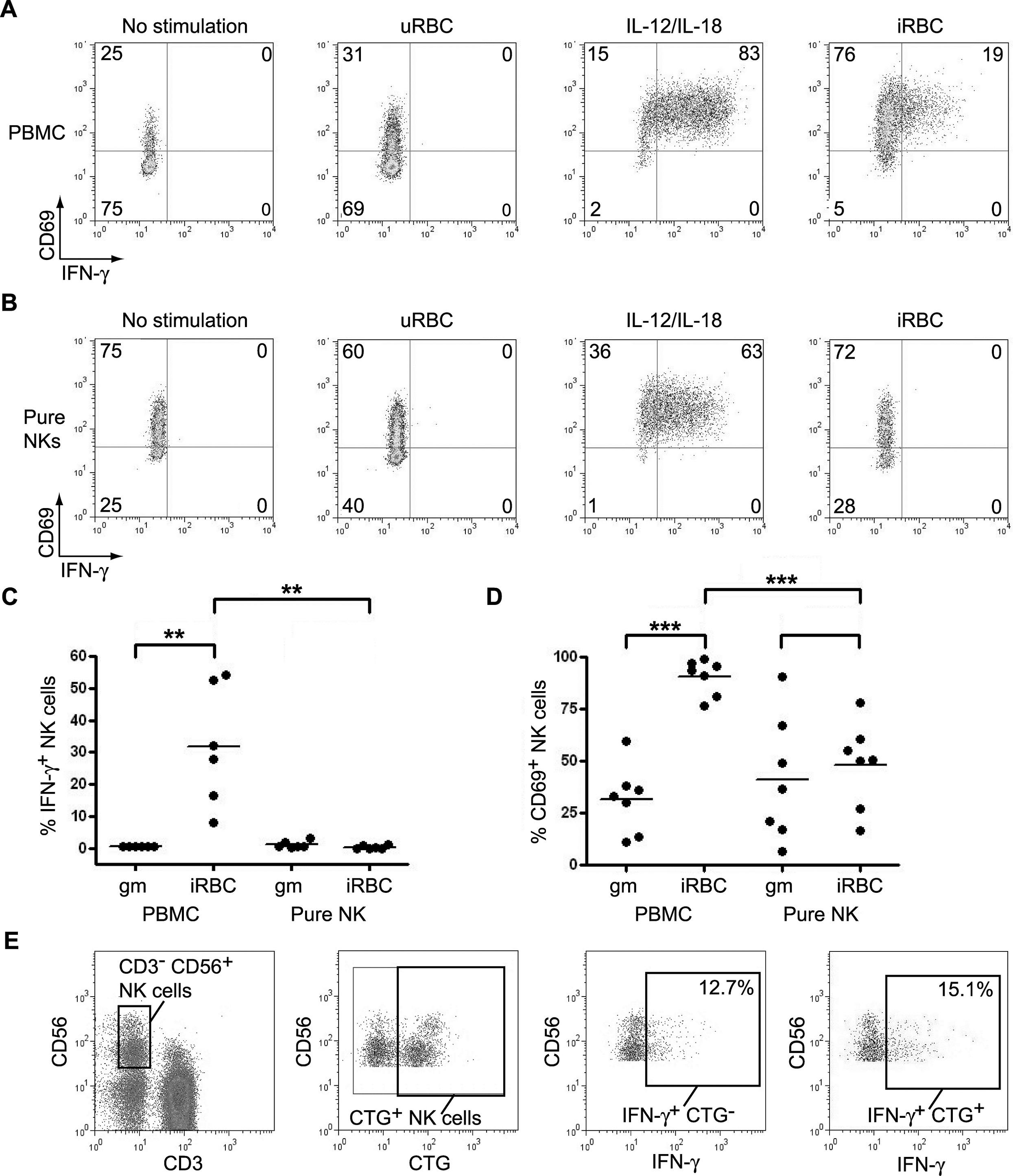Anti Human CD56 Antibody, clone MEM-188 thumbnail image 6