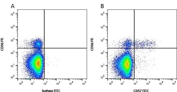 Anti Human CD57 Antibody, clone TB01 thumbnail image 1
