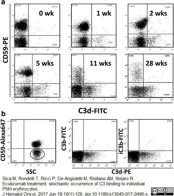Anti Human CD59 Antibody, clone MEM-43 thumbnail image 3