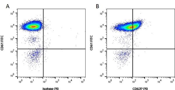 Anti Human CD62P Antibody, clone AK-6 thumbnail image 2