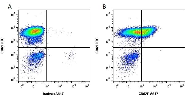 Anti Human CD62P Antibody, clone Psel.KO.2.5 thumbnail image 3