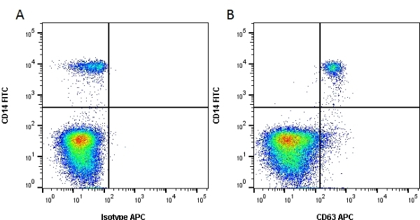 Anti Human CD63 Antibody, clone MEM-259 thumbnail image 1
