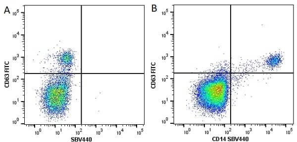 Anti Human CD63 Antibody, clone MEM-259 thumbnail image 10