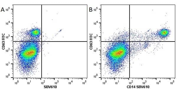 Anti Human CD63 Antibody, clone MEM-259 thumbnail image 11