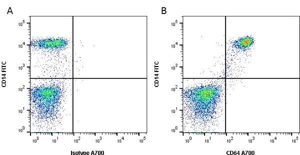 Anti Human CD64 Antibody, clone 10.1 thumbnail image 2