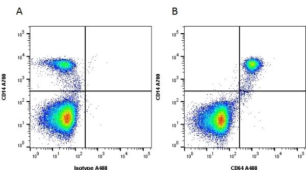 Anti Human CD64 Antibody, clone 10.1 thumbnail image 3