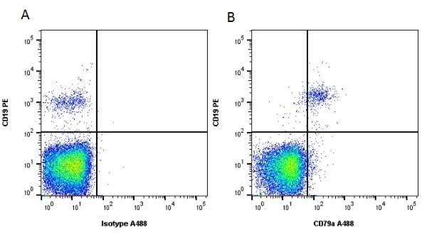 Anti Human CD79a Antibody, clone HM57 thumbnail image 1