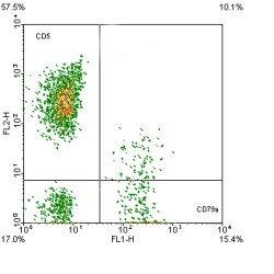 Anti Human CD79a:FITC/CD5:RPE, clone ZL7-4/MF7-14.5 gallery image 1
