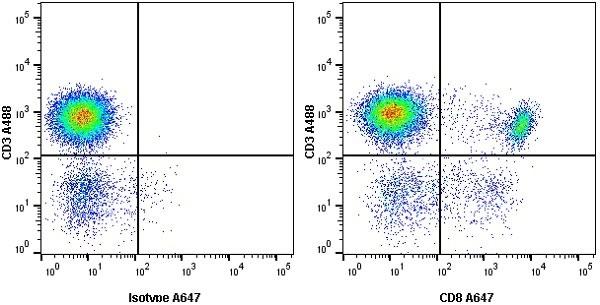 Anti Human CD8 Antibody, clone LT8 thumbnail image 10