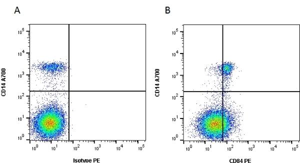 Anti Human CD84 Antibody, clone CD84.1.21 gallery image 1