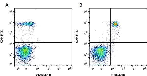 Anti Human CD86 Antibody, clone BU63 thumbnail image 1