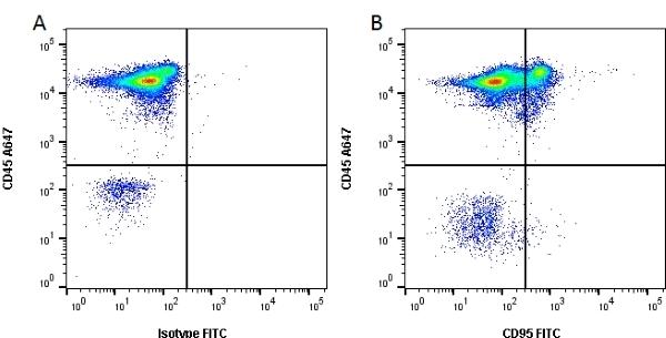 Anti Human CD95 Antibody, clone LOB 3/17 thumbnail image 1