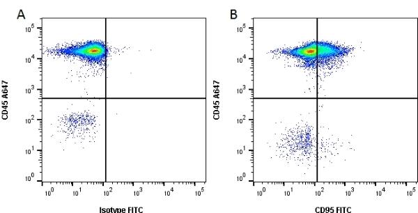 Anti Human CD95 Antibody, clone LOB 3/17 thumbnail image 2