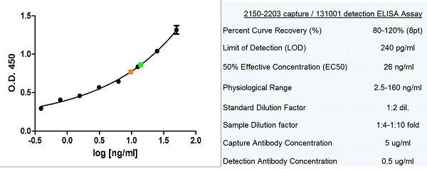 Anti Human Collagen I/II/III Antibody, clone NLI/22 gallery image 1