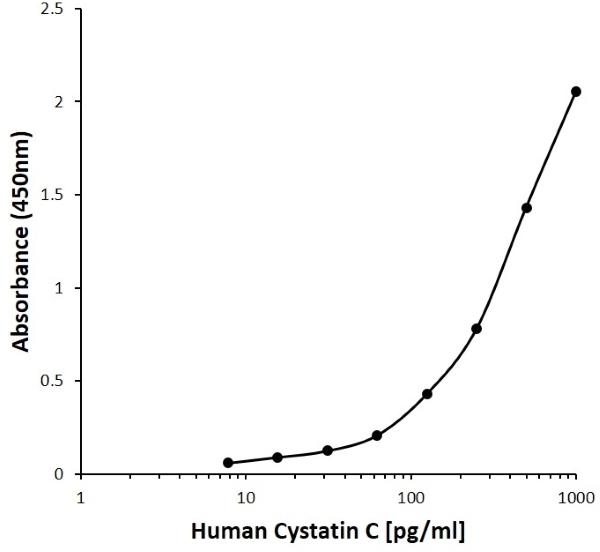 Anti Human Cystatin C Antibody, clone B01-8B1 gallery image 1