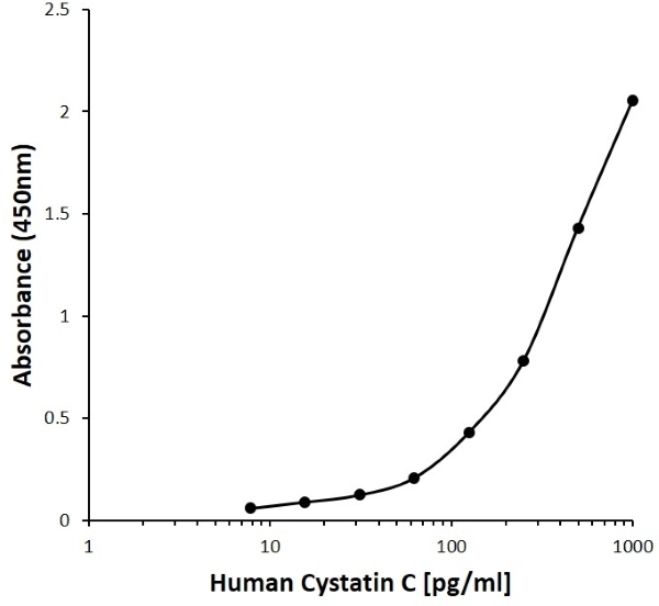 Anti Human Cystatin C Antibody, clone E01-8H8 gallery image 1