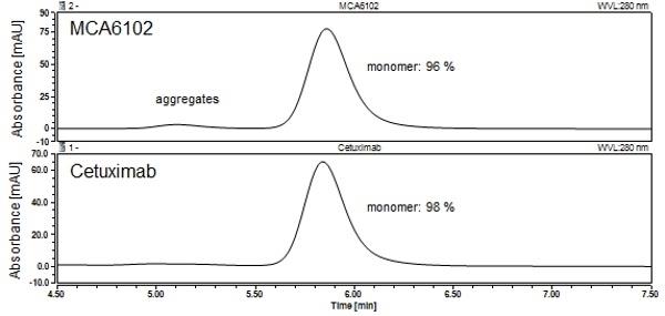 Anti EGF Receptor (Cetuximab Biosimilar) Antibody, clone C225 thumbnail image 2