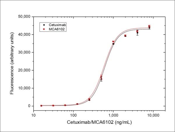 Anti EGF Receptor (Cetuximab Biosimilar) Antibody, clone C225 thumbnail image 3