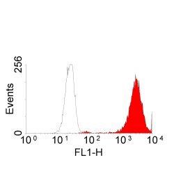 Anti Human EGF Receptor Antibody, clone ICR10 thumbnail image 1