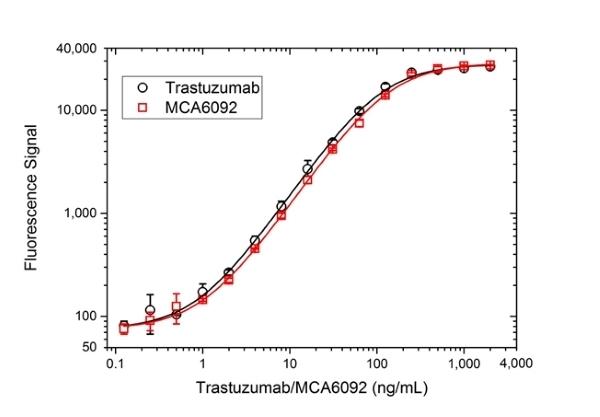 Anti ErbB2 (Trastuzumab Biosimilar) Antibody, clone 4D5-8 thumbnail image 3