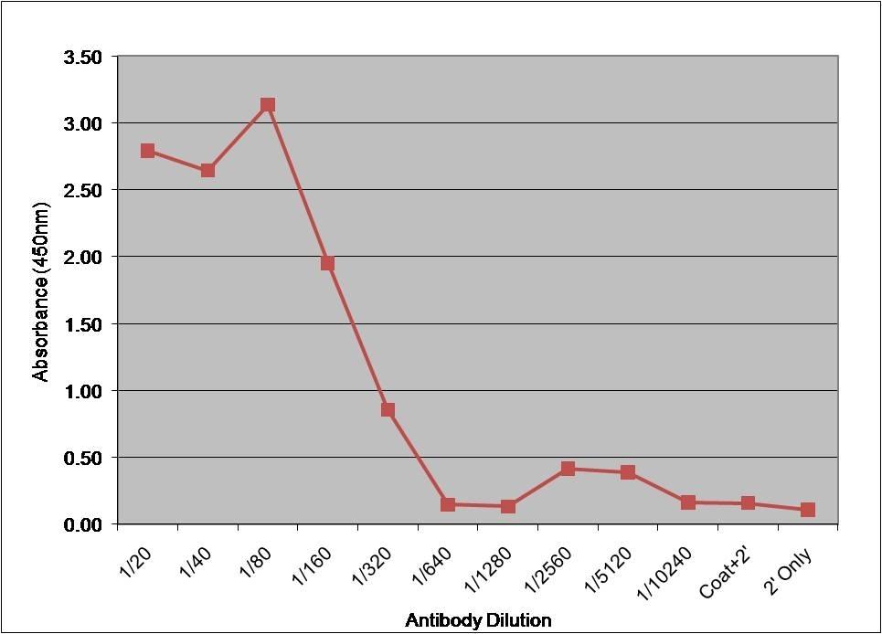 Anti Human Factor VII Antibody, clone RFF-VII/1 gallery image 1