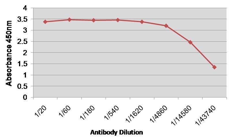 Anti Human Factor VIII Antibody, clone RFF-VIIIC/5 gallery image 1