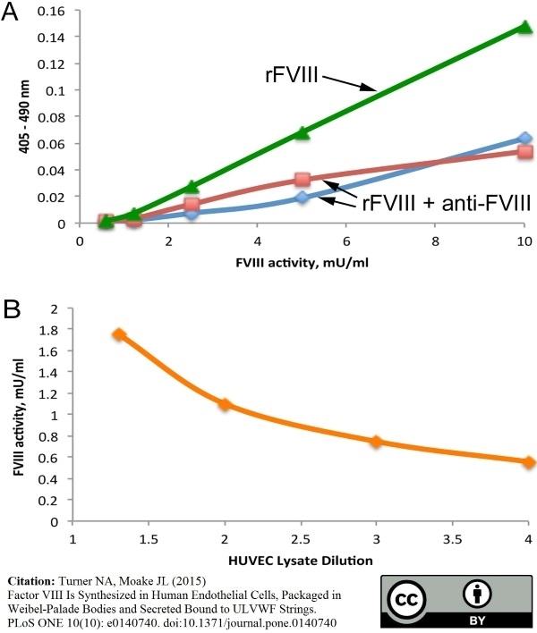 Anti Human Factor VIII Antibody, clone RFF-VIIIC/8 thumbnail image 2