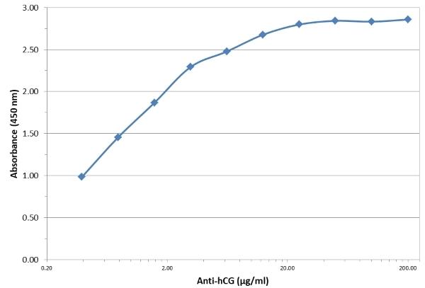 Anti hCG (Alpha 6 Epitope) Antibody, clone INN-hCG-72 gallery image 1