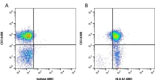 Anti Human HLA A2 Antibody, clone BB7.2 thumbnail image 1