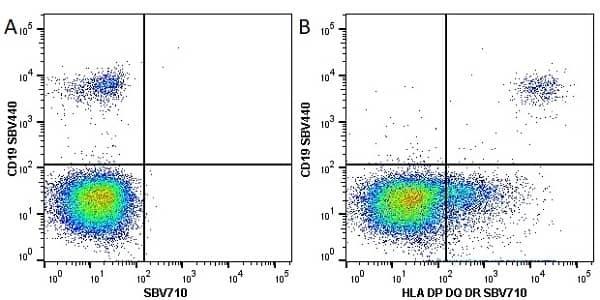 Anti Human HLA DP DQ DR Antibody, clone WR18 thumbnail image 14